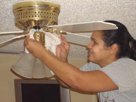 Tidy tip clean the ceiling fan demeter clarc permalink mozeypictures Choice Image