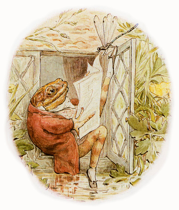 BEATRIX POTTER FROG AND FIREFLY