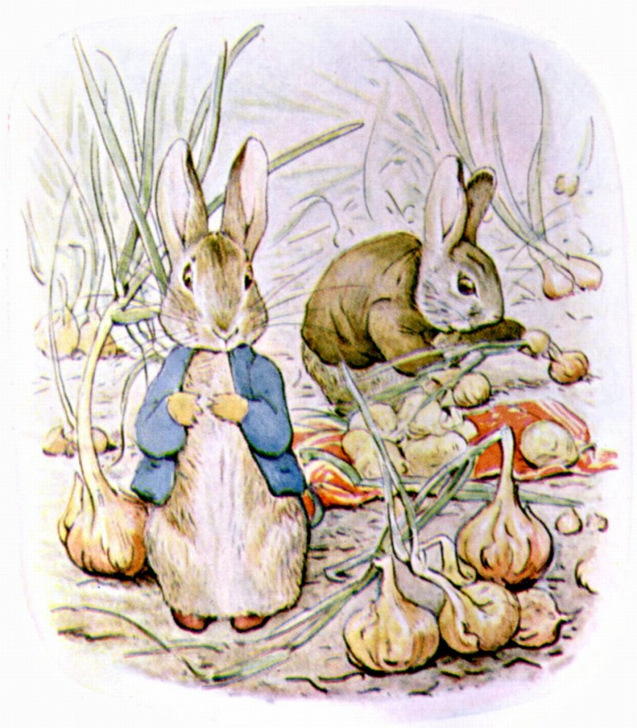 BUNNIES IN THE ONION PATCH
