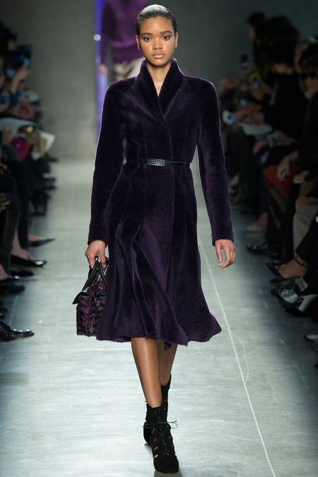 BOTTEGA VENETA FALL 2014 RTW Iesha Hodges