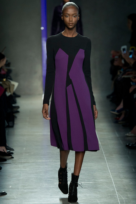 BOTTEGA VENETA FALL 2014 RTW Riley Montana
